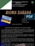 Exposicion Ecogeografia de venezuela bioma sabana