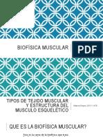 biofsicamuscular-170219152229