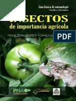 Insectos de Importancia Agricola