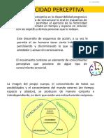 CAPACIDAD PERCEPTIVA.pdf