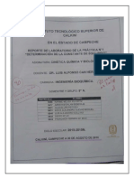 Reporte de Laboratorio Diego Gpe. Ac Ac