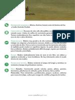 Pukté.pdf