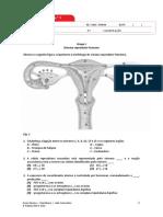 Bio12 Ficha 1 FINAL.docx