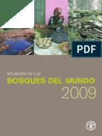 La Situación de Los Bosque en El Mundo.