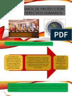 MECANISMOS DE PROTECCIÓN DE LOS DERECHOS HUMANOS.pptx