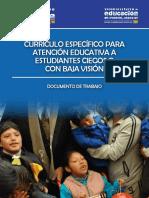 2012 CURRICULO ESPECIFICO EST CIEGOS.pdf