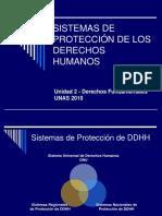 Pp. Sistema de Protección de Los Derechos Humanos