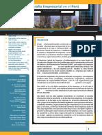 03 Informe Tecnico n 03 Demografia Empresarial II Trim2018 Ago2018