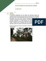 Informe San Roque de Cumbaza