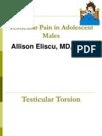 Testicular Pain 2