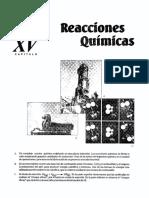 quimica15-reacciones-quimicas.pdf