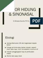 tumor hidung dan sinonasal