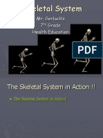 Skeletal+System+Powerpoint.ppt