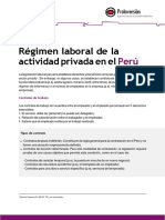 4 Regimen Laboral-converted