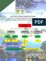 STRUCTURE OF PRIMARY NURSING CARE MODEL.pdf