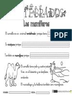 VERTEBRADOS-mamíferos1.pdf
