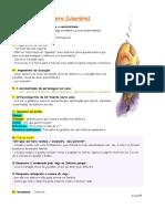 2.Onzeneiro_sintese
