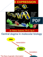 Gene Expression 3