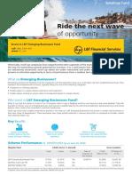 LT Emerging Businesses Fund