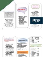356358761-Kb-Implan-Leaflet.docx