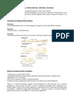 endocrine parhon