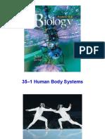 bio35nervous-090317172133-phpapp01.pdf