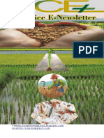 13th November,2018,2018 Daily Global Regional Local Rice E-Newlsetter