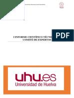Informe-Expertos-1