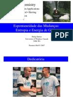 Slide bom sobre energia de gibbs.pdf