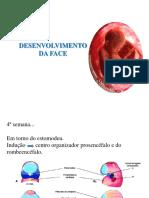 5 desenvolvimento face 1 med..pdf