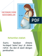 Deteksi Risiko Kehamilan