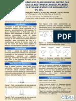 Composição Química e Atividade Antitumoral Banner Gabriela