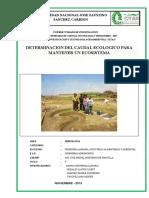 118909401-Determinacion-del-caudal-ecologico-para-mantener-un-ecosistema.docx