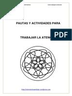 Pautas para trabajar la atencion.pdf