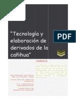 Tecnología de La Cañihua