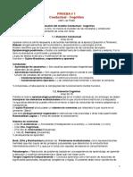 Teoría Conductual Cognitivo - Rossi