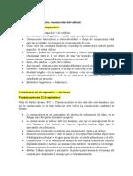 Seminario Pueblo Mapuche