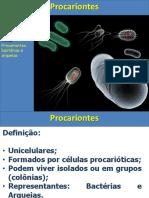 Aula Bactérias e Doenças Associadas