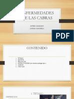 ENFERMEDADES DE LAS CABRAS.pptx