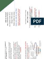 Ch2 DNA&Chromatin