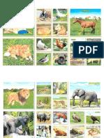 Animales Domesticos y Salvajes