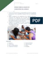 218S562 Informe Analisis Copia