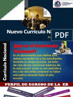Curriculo Nacional 2018