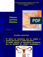 14 CANCER CERVICO UTERINO - PAP.ppt