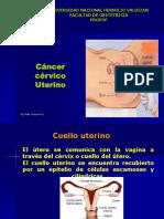 14 CANCER CERVICO UTERINO - PAP.ppt