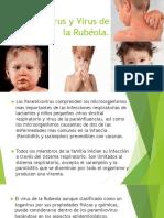 7.Paramixovirus y Virus de La Rubéola