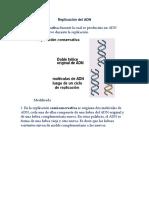 Cuestionatio Replicación Del ADN