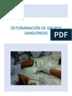 Grupos Sanguíneos-laboratorio Morfo