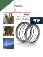 WCB Small Crane Nongeared Slewing Ring Bearing Price