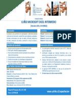Programa Microsoft Excel Intermedio PDF 196 Kb